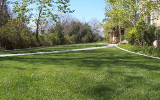 Landscape Maintenance by Western Gardens
