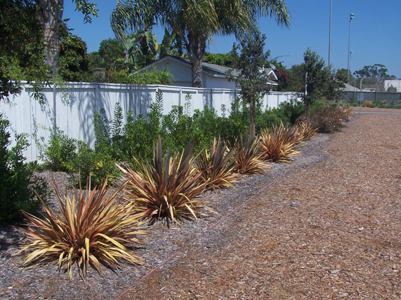 Municipal Landscape Improvements
